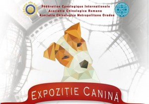 expo catei